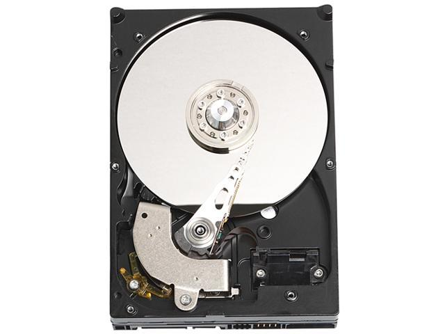 Western Digital WD800JD Hard Drive