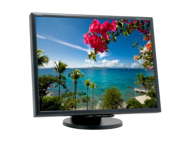 "NEC Display Solutions LCD2170NX-BK Black 21"" 8ms(GTG) LCD Monitor 300 cd/m2 1000:1"