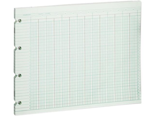 Wilson Jones G10-24 Accounting Sheets, 24 Column, 9-1/4 x 11-7/8, 100 Loose Sheets/Pack, Green