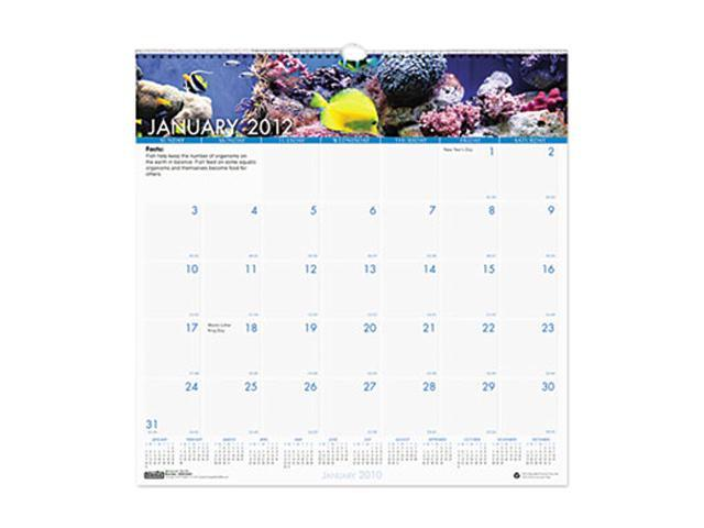 House of Doolittle 3641 Sea Life Monthly Wall Calendar, 12 x 12