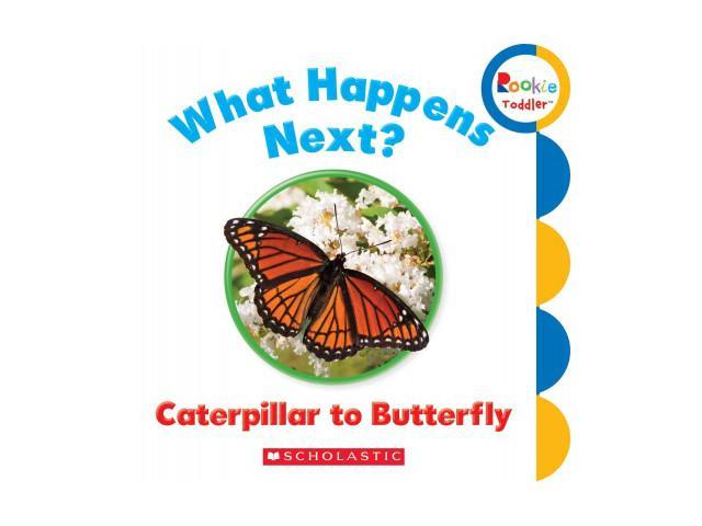 What Happens Next? Caterpillar to Butterfly Rookie Toddler BRDBK Scholastic Inc. (Corporate Author)