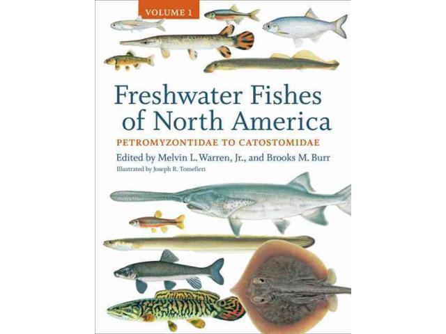 Freshwater fishes of north america freshwater fishes of for North american freshwater fish