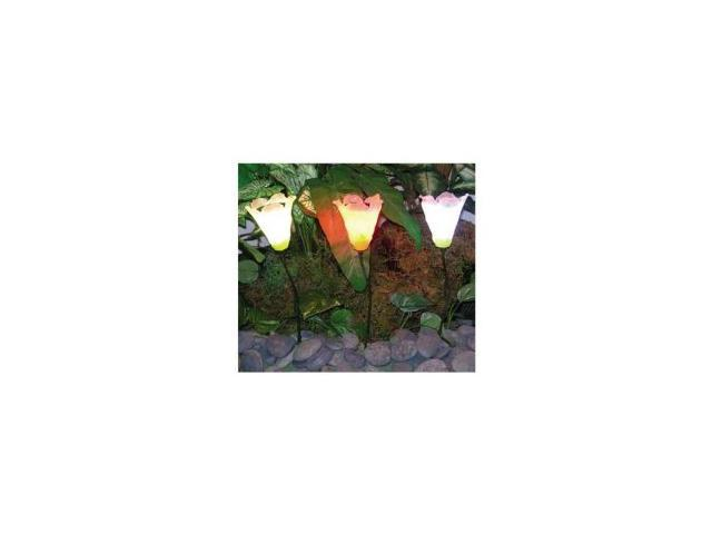 Set Of 3 Solar Tulip Lights