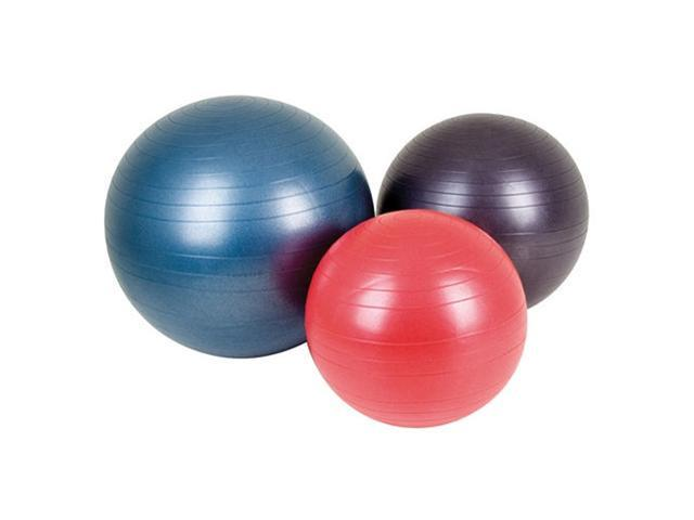 AGM Group 38102 25.59 in. Fitness Ball - Dark Purple