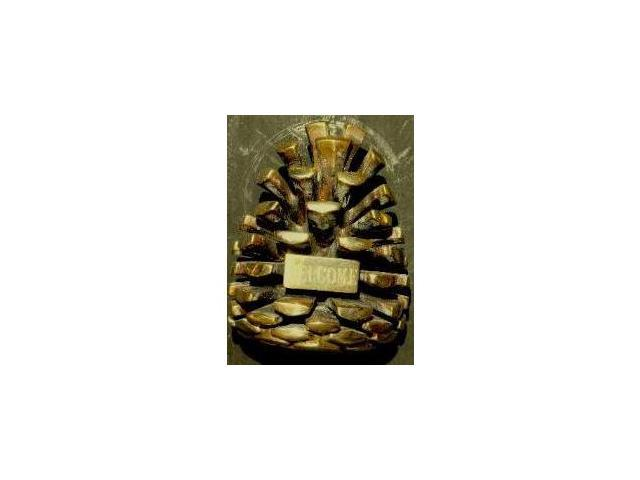 Mayer Mill Brass - PCK-E - Pinecone Door Knocker