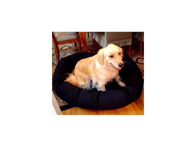 Majestic Pet 788995611202 24 in. Small Bagel Bed- Black