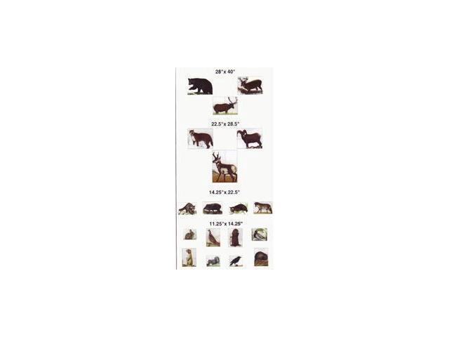 Maple Leaf Press A1 Nfaa Animal Set No. 1