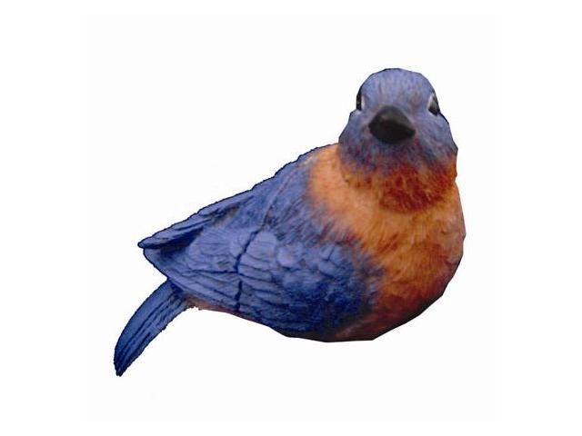 Clark Collection CC52066 Eastern Blue Bird