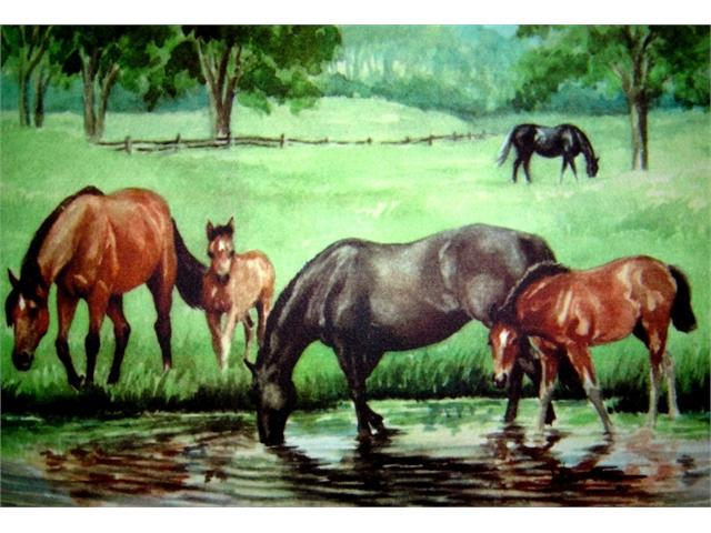 Custom Printed Rugs DM  24 Horse Pond Door Mat