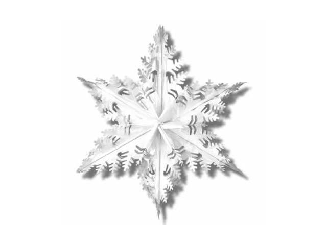 Beistle - 20505-S - Metallic Winter Snowflake- Pack of 12