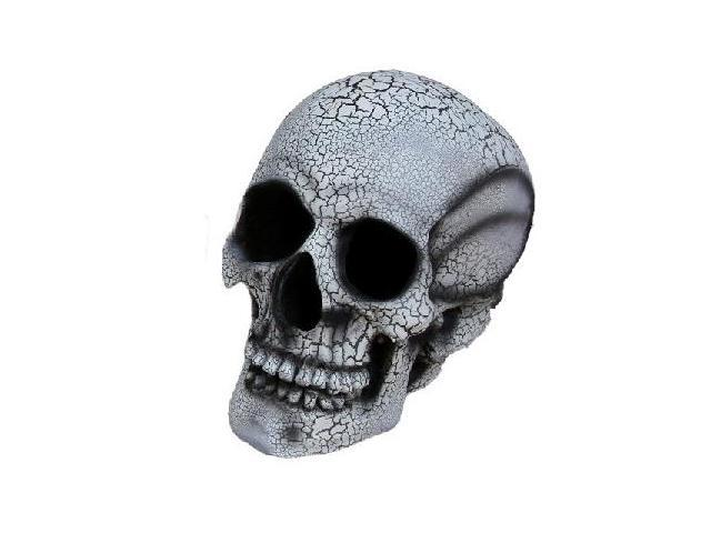 Costumes For All Occasions FW91113WT Large Realistic Skull - White