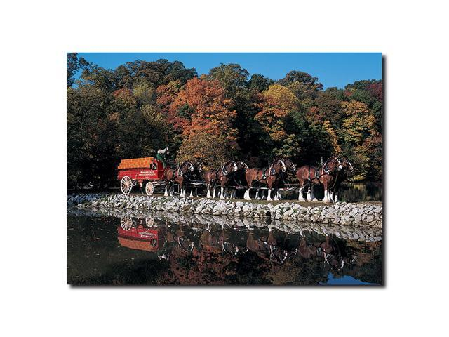 Clydesdales in Fall by Stone Pond- 14 x 19 Canvas