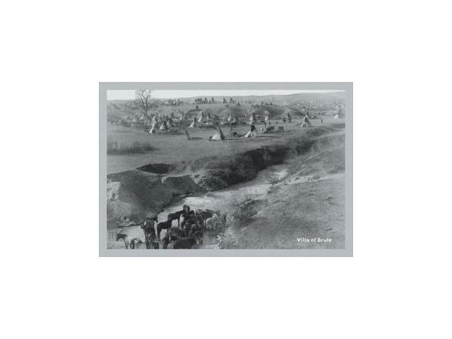 Buyenlarge 13268-xP2030 Villa of Brule 20x30 poster