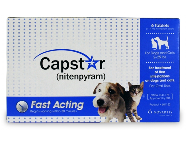 NOVARTIS 004CG-61011 Capstar Flea Treatment Dog - Blue- , 2-25 lbs, 6 Pack