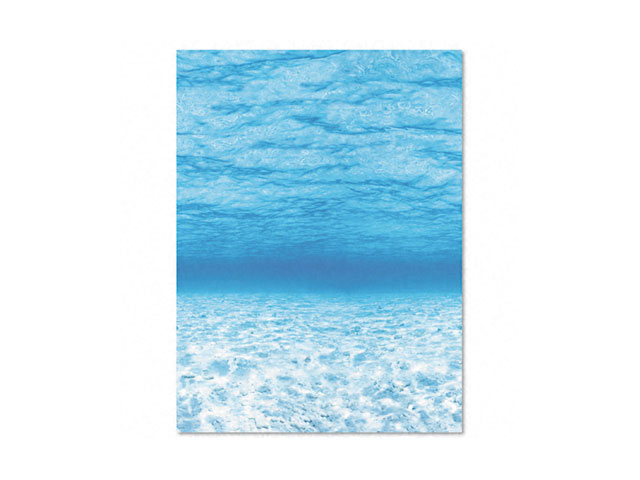 Pacon 56525 Fadeless Designs Bulletin Board Paper  Under Sea  Acid-Free  48   x 50  Rl