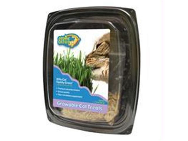 Ourpets Company - Cosmic Kitty Cat Family Grass - 1050011700