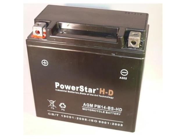 PowerStar PM14-BS-HD-130 Faytx14 Battery Replaces Ytx14-Bs Cytx14-Bs Ytx14Bs Gtx14-Bs Sealed Gel Agm