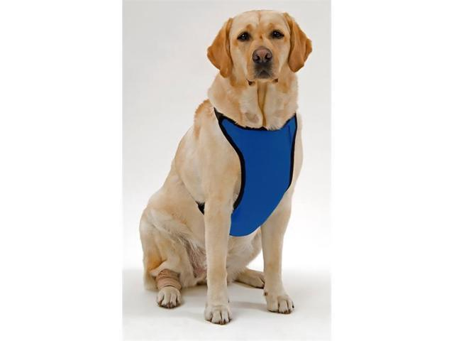 Warming/Cooling Dog Harness with Gel Pack Medium Royal Blue