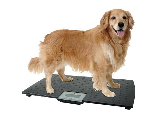 Redmon Digital Large Pet Weight Scale for dogs - Black