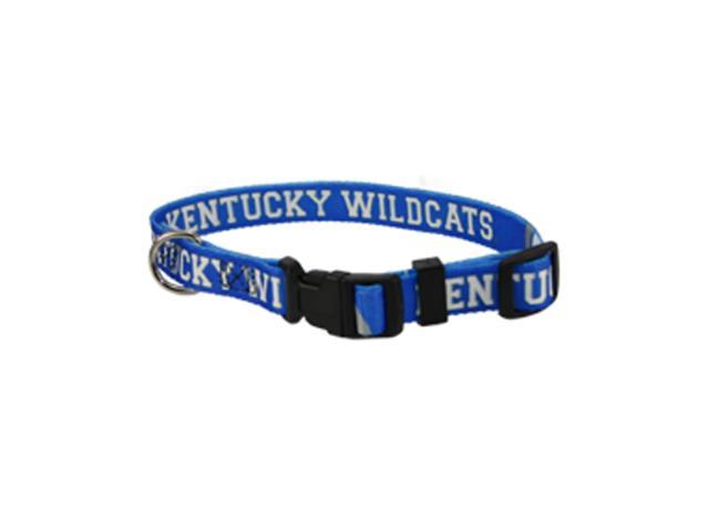 Hunter Sports Team Logo Kentucky Wildcats Dog Collar Medium