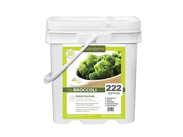 Crisp Freeze Dried Broccoli Healthy Vegetable Snack Pouch 222 Servings