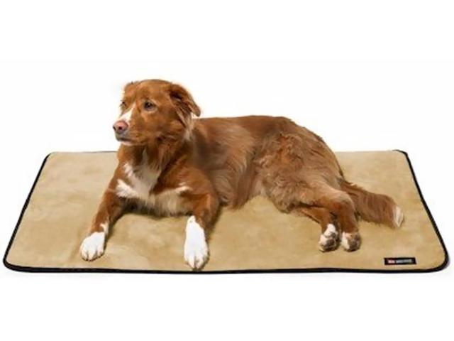 Big Shrimpy Pet Dog Landing Pad Kennel Crate Mat Small Coffee Suede