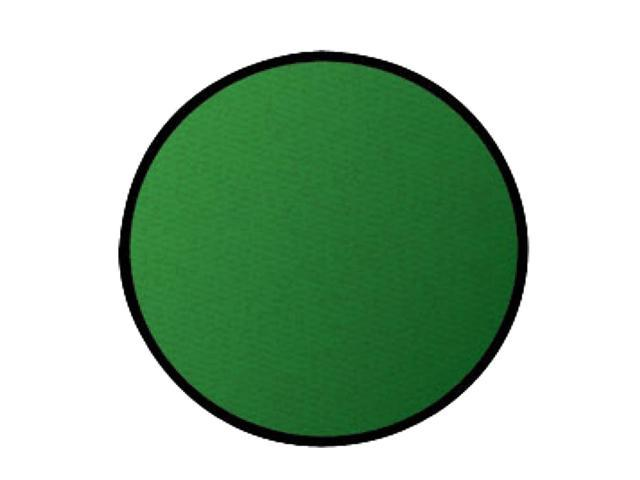 Learning Carpets Indoor Outdoor Playmat Solid Green - CPR466 Round 9'