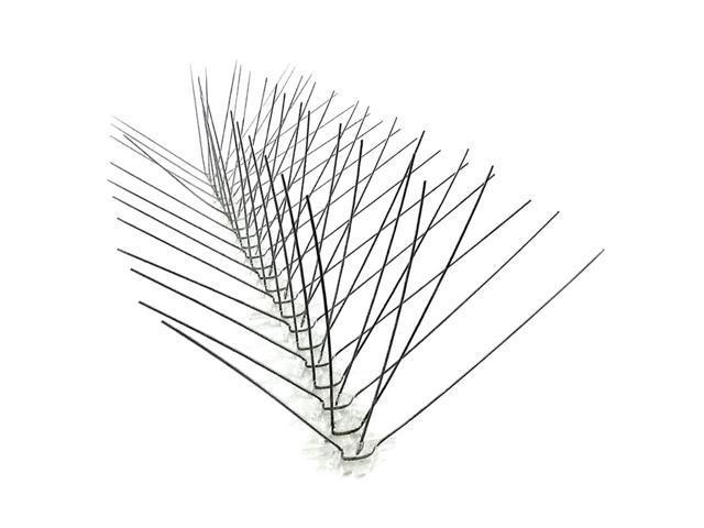 Bird Spike Kit, 50 Linear ft, S Steel