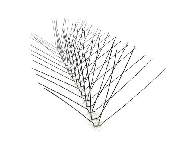 Bird-X Lawn Garden Backyard Birding Accessories Stainless Spikes Wide (10ft)