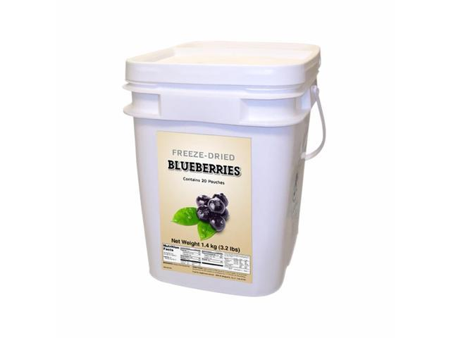 Food For Health International Outdoor Travel Emergency Freeze Dried Blueberries 160 Servings