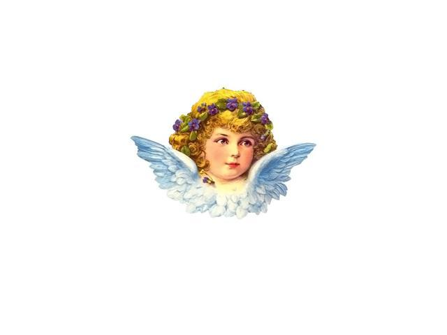 Alexander Taron Home Seasonal Decorative Accessories German Christmas Card - Angel Face - 6.5