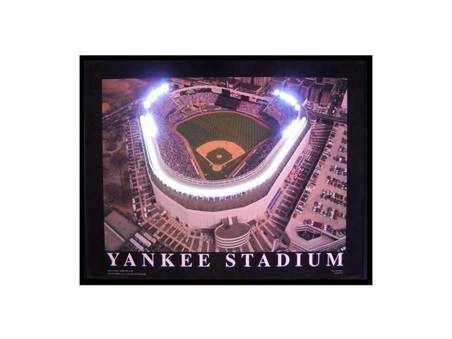 Neonetics Yankee Stadium Neon Led Picture