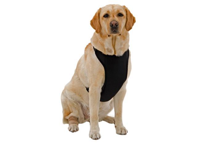 Kumfy Tailz Small Pet Animals Safe Protective Adjustable Neck Mesh Harness Medium Black