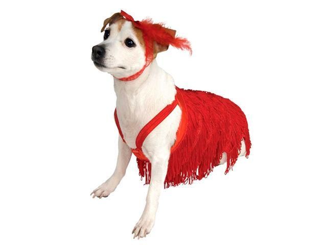 Flapper Dog Costume - Dog Costumes - Sexy