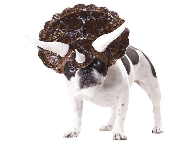 Triceratops Dog Costume - Animal Planet Dog Costumes