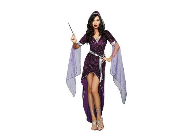 Sorcery & Seduction Sorcerer Adult Costume Large