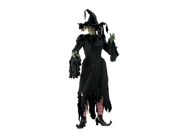 Witch Adult Costume Small