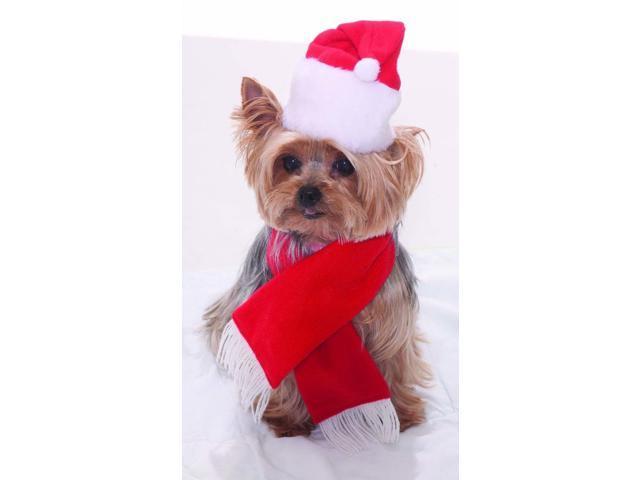 Santa Christmas Pet Costume One Size