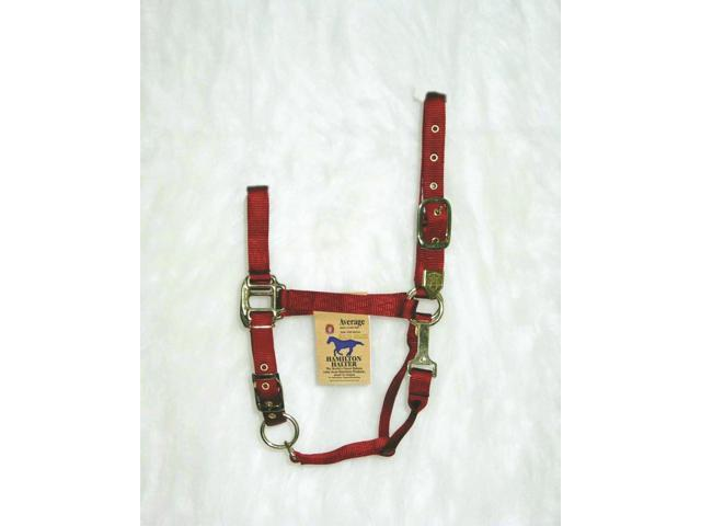 Hamilton Halter 1DAS AVRD Adjustable Chin Halter With Snap