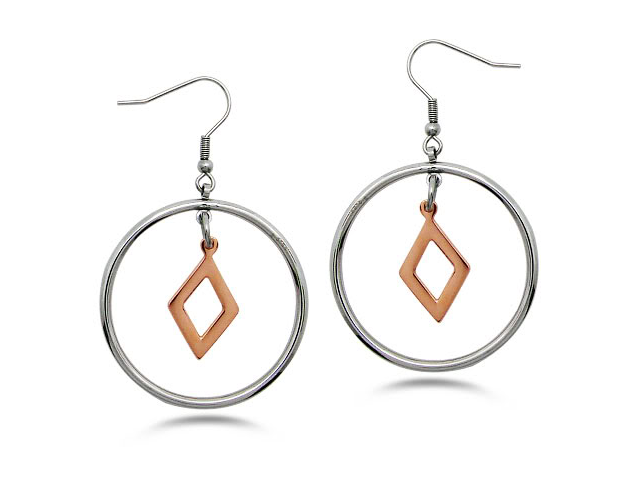Two Tone Stainless Steel Earrings