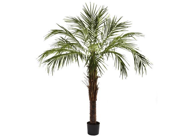 Nearly Natural 6' Robellini Palm Tree - 5366