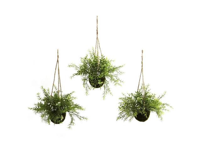 Nearly Natural Ruscus, Sedum & Springeri Hanging Basket (Set of 3)