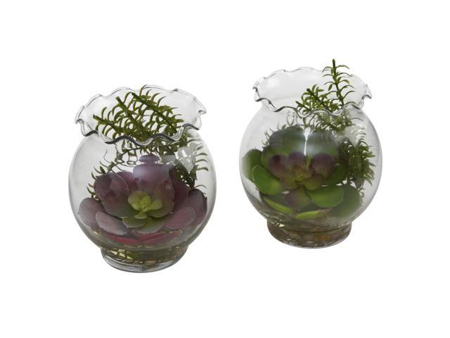 Nearly Natural  Succulent w/Fluted Vase (Set of 2)