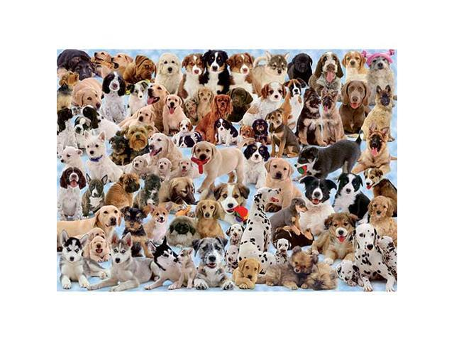 Dogs Galore 1000 Piece Puzzle by Ravensburger