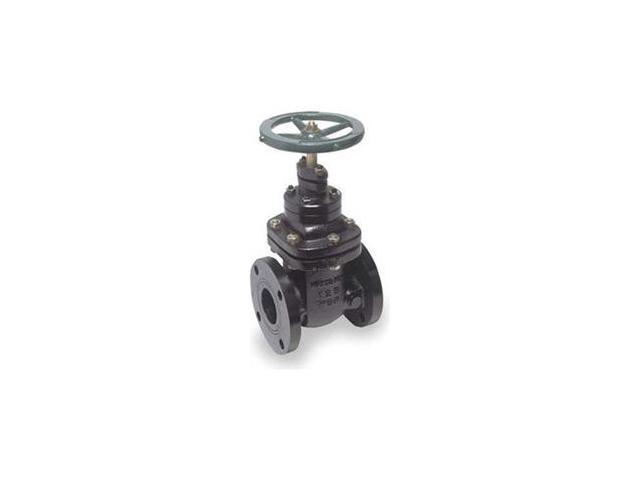 Gate Valve, 2 1/2 In, Non Rising Stem