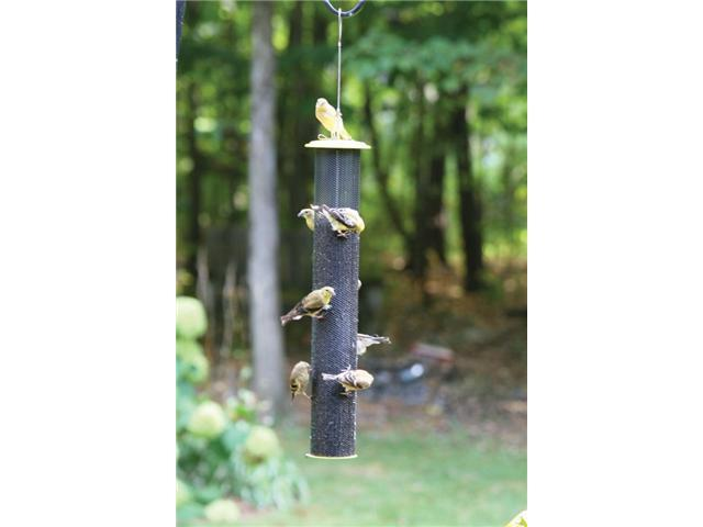 Bird's Choice Tall Magnet Mesh Nyjer Feerder- Yellow