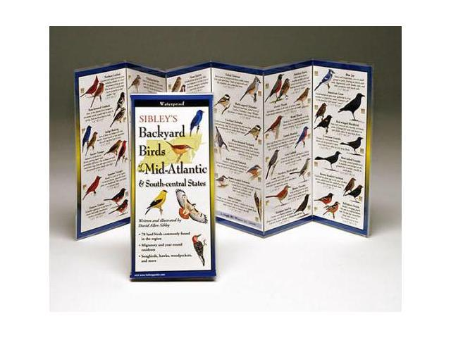Steven M. Lewers & Associates Sibley's Backyard Birds Mid-Atlantic & South