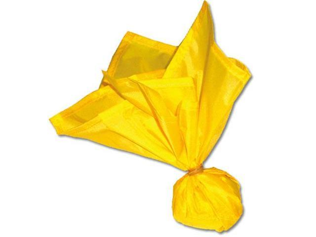 Official's Penalty Flag