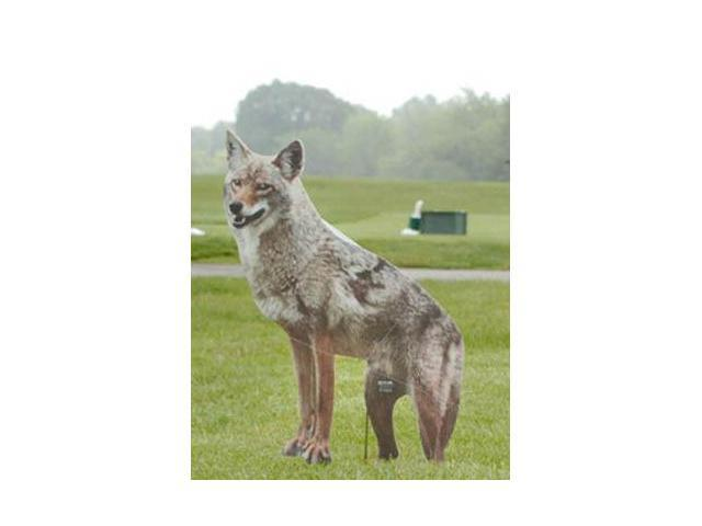 Coyote Replica, new, bird and pest control - by Bird-X