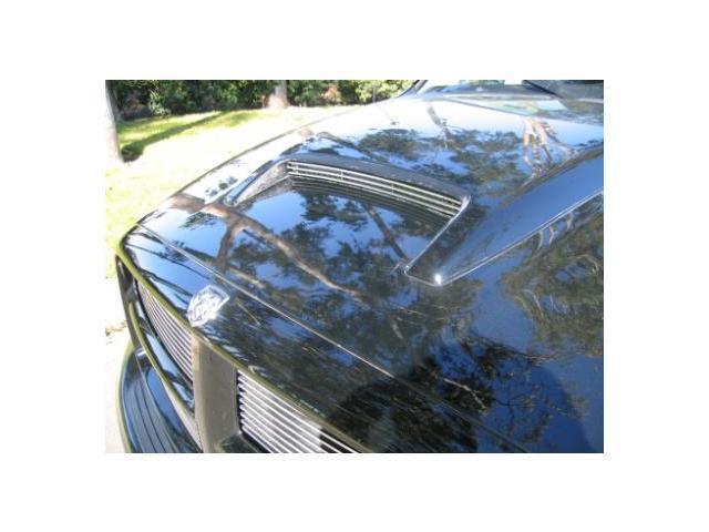T-REX 2002-2005 Dodge Ram PU Billet Hood Scoop Insert - Rumble Bee Model (3 Bars) POLISHED 20463